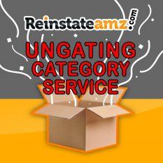 REINSTATEAMZ.COM Amazon-ungating-category-Services