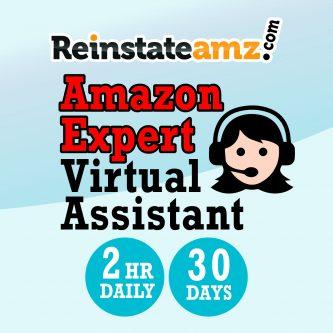 Reinstateamz Service Virtual Assistant
